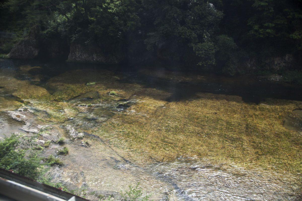 飯田線車窓川